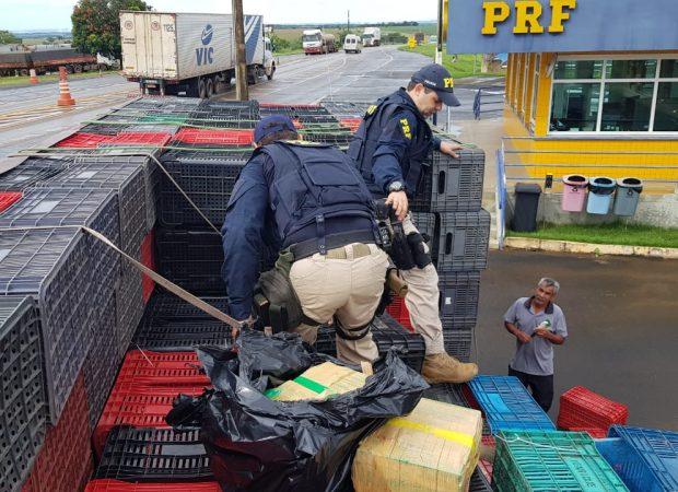 Polícia Rodoviária Federal apreende 1 tonelada de maconha (Foto: PRF/ Divulgação)