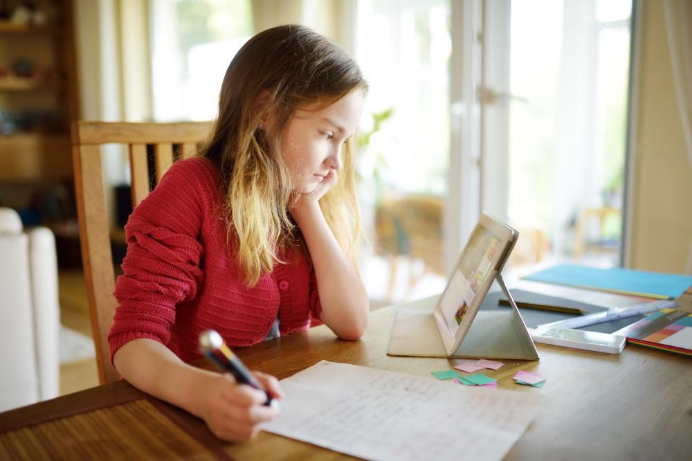 Internet é a grande aliada das escolas para manter rotina de estudos dos alunos