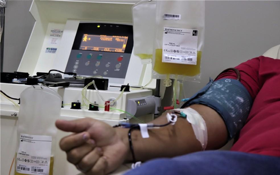 Coleta de plasma — Foto: Hemocentro/Divulgação